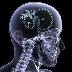 mind development