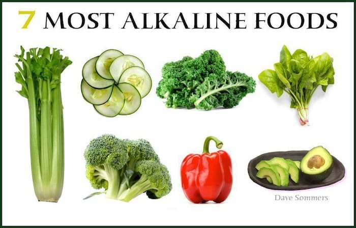 Diet High In Alkaline Producing Foods
