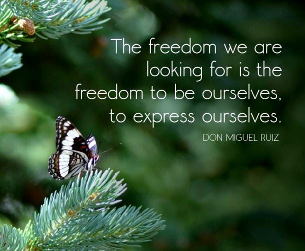 Price Of Freedom >> Favorite Inspiring Quotes ~ Freedom