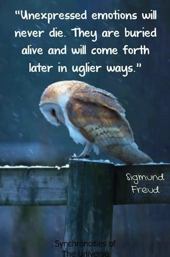 Words Of Wisdom Emotional Intelligence