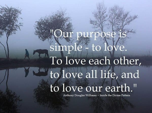 Life Purpose Quote. U201c
