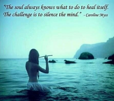 9 Best Natural Health Quotes images   Natural health ...  Holistic Wellness Quotes